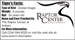 Raptor Center Logo